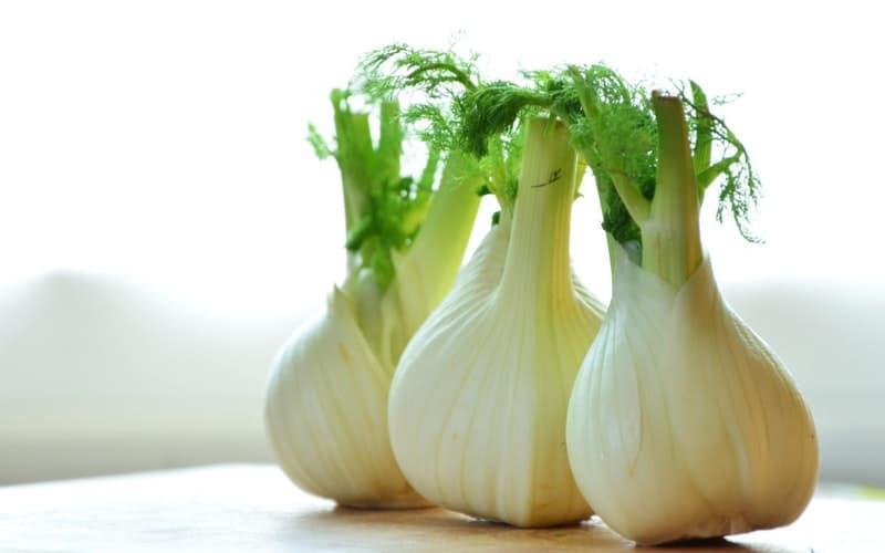 Onion has antibacterial properties