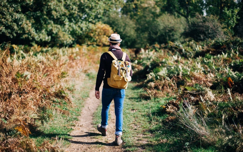 daily walking reduces diseases