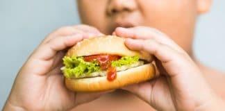 childhood obesity junk food